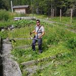 Pflanzgarten ausmähen
