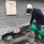 Renovierung Friedhofsmauer