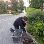Randsteine setzen Omesberg