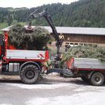 Äste umladen von U400 auf Traktor Astcontainer