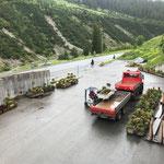 Blumentröge laden am Bauhof für Rüfiplatz
