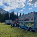 Hilfeleistung Viehtransport Brazer Stafel nach Fahrfehler