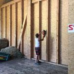 Umbau Stall am Anger für Lagerräumlichkeiten