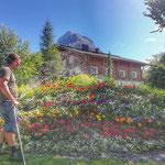 Blumengießen Omesberg
