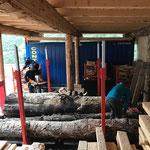 Holz richten für Weihnachtsmärkte