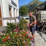 Blumenpflege beim Gemeindeamt