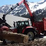 Forstaufräumarbeiten beim Älpele