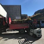 Erste Blumentröge am Bauhof abladen