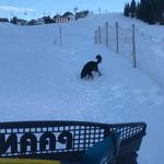 Winterwanderwege Oberlech Präparierung mit PB Paana...
