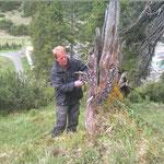 Wald-Schonung Bauhof- einzäunen