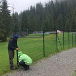 ...und Zäune abbauen im Waldbad