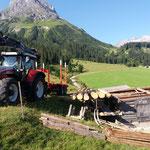 Drittleistung, Holztransport am Omesberg