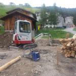Holz: Robinie