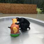Kinderbecken-Pferdchen mit Chromstahlschrauben fixieren