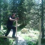 Zäunarbeiten im Wald