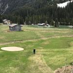 Müllzwicken entlang Winterwanderwege und Loipen auf dem Golfplatzareal