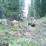 Waldpower in Action