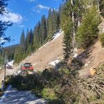 Forstarbeiten L198, Bürstegger Wald