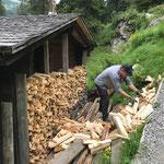 Waldcamp mit Grillholz bestücken