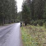 Zäune ablegen rund um die Parkplätze Waldbad Lech