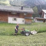 Mulcharbeiten mit Rapid in Zug
