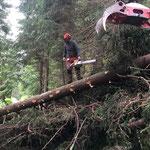 Aufräumarbeiten Wanderweg Lech - Stubenbach, mit Steyr 6240 CVT