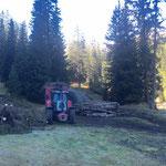 Forstarbeiten Lawinenholz Hoher Steg
