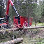 Forstarbeiten Johannestal, mit Steyr 6190 CVT, Epsilonkran