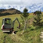 LWL-Grabungsarbeiten abschließen Tannberg