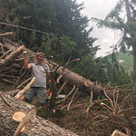 Windwurf Weg Wanghus - Bürstegg aufräumen