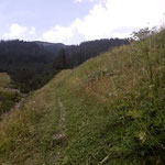 Sagenwald Zug Weg ausmähen