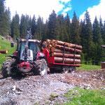 Rundholztransport Waldsanierung Golfprojekt