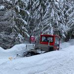 Snow Rabbit 3 am Tannberg-Schwimmbadweg