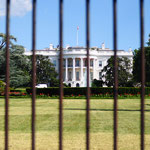White House mit Gitter