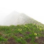 Aussicht auf dem Gipfel bzw. Grad