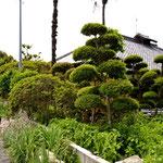 ご自宅の景観です...新緑の季節からか非常に風情あります