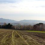 ホナミの畑。最も広い畑です。ご自宅の畑とローテーションで毎年育ててるモノは違ってきます。