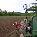アイヌナイの畑...まさに秘境を開拓したような畑です。それでいて普通に野菜は育ちます。