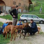 Hundeversammlung...da hat jemand Leckerlis