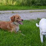 Emma und Pepper