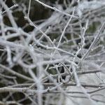 so schön winterlich