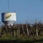 Les vignes à la Haie et son chateau d'eau