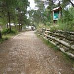 Sentiero della Pineta