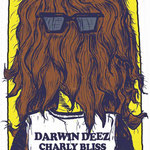 Darwin Deez / Charly Bliss gig poster by Brent Mosser