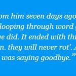 Brian Eno quote