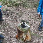 Wir wiegen was der Waldboden hergibt