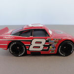 Dale Earnhardt Jr. aggro expresion - Side