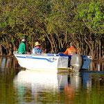Barra fisher at Yellow Water Kakadu NP.