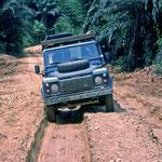 LR on Truck Track