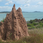 Australias northern most Termite Hill